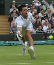 Novak Djokovic 10 x 8 unsigned photo-P33-jouant à Wimbledon