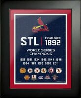 """St. Louis Cardinals World Series Champions Photo (Size: 14"""" x 18"""") Framed"""