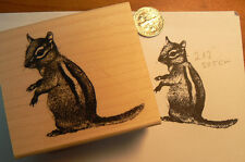 P11 Chipmunk rubber stamp WM