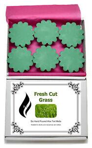 6 x Fresh Cut Grass Scented Wax Tart Melts