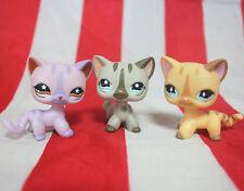 3pcs Littlest Pet Shop #886 #933 #468 RARE Short Hair Cat Cream Diamond EYE LPS