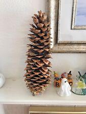 "Sugar Pine Cones 15"" Elemental Exchanges Lodge Decor Nature Craft Holiday last 1"