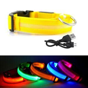 Dog Pet Collar LED Light Up Flashing Luminous USB Rechargeable Safety Night UK