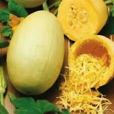 200 Seeds Vegetable Spaghetti Squash  new seeds for 2017 Non-GMO  Heirloom