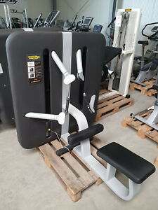 PREMIUM TECHNOGYM KINESIS Station Low Pull Butterfly Reverse Machine Fitness