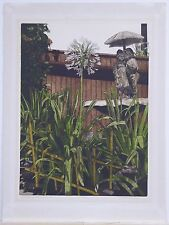 "James Whiteman-Parker, ""Agapanthus Africanus,"" Etching"