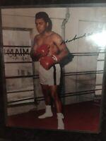 MUHAMMAD ALI Signed Boxing 8 X 10 Photo W/ COA Autograph Champion
