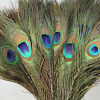 10Pcs Natural Peacock Tail Feathers DIY Festival Wedding Party Home Decoration