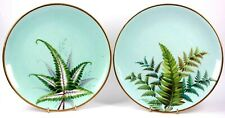 Antique Fine Porcelain Pair of Plate Hand Painted Ferns Circa 1820