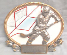 full color Male Hockey trophy resin plaque Mpi Rfh9657