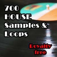 House Samples & Loops Pack, 700 Loop, WAV, HQ Create Music. Digital Pack FL, DAW