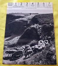 1959 A L'ANSE DES FONTAINES (ILE D'YEU).