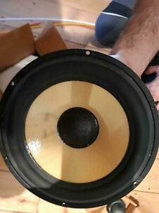Bass Scan - Speak 18W/8544