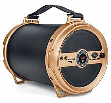 iBall Karaoke Barrel V 2.0 Bluetooth Portable Speaker + Wireless MIC & Remote