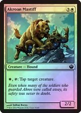 Akroan Mastiff - Journey into Nyx - Common (Foil) - Near Mint