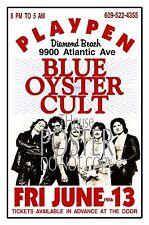 BLUE OYSTER CULT 1986 Playpen Diamond Beach Artist Rendition Poster THouse 2017