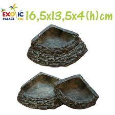 Bol Resina 2in1 Pesebre Para Alimentos Reptiles Tortugas Terrario D'Decoración