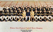 Cfl 1953 Winnipeg Blue Bomber Color Team Picture 8 X 10 Photo Print Picture