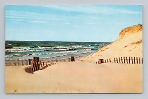Scenic Greetings from Michigan City Indiana IN Lake Shore Sand Dune Vtg Postcard