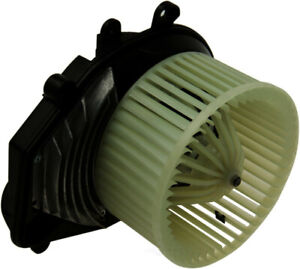 HVAC Blower Motor-Nissens WD Express 902 54030 334