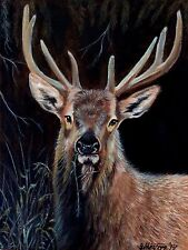 Original Ölgemälde Hirsch Wild Leinwand original oil painting red deer stag new