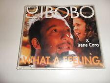 CD DJ Bobo & IRENE CARA-what a Feeling