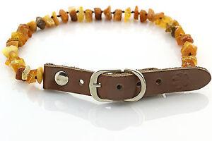 "Raw Baltic Amber Anti-Tick Anti Flea Dog Collar Necklace 31-36cm / 12.2-14.1"""