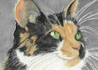 "ACEO - ATC Calico Cat PRINT of my Original Watercolor ""Calico Kitty"""