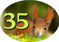plaque de maison - boite aux lettres écureuil inscription au choix réf 52