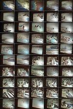16 mm Film 1960-Heinz Sielmann-Vogelinsel Chincha Guano Dünger-Antique Movie