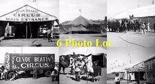 6 1949 Clyde Beatty Circus Photo Lot CB1
