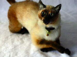 Siamese cat toy