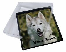 4x Siberian Husky Dog 'Yours Forever' Picture Table Coasters Set in Gif, AD-H1yC