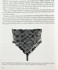 Museum of Ethnology Vienna journal, vol.47, 1993, oasis Siwa Egypt