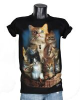 Cute Kitty Cats Beautiful Baby Kittens High Quality T-Shirt Glow in the Dark