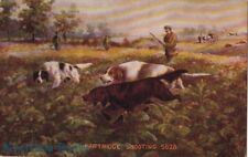 Postcard Dogs Hunting Partridge Shooting 5628