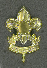 SCOUTS OF NIPPON (JAPAN) - BOY & GIRL SCOUT (BS) Metal Plume / Hat Patch