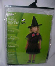 Pumpkin Patch Witch Disguise Halloween Costume Sz Toddler 2T Hat Poncho Dress