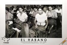 El Habano CIGAR POSTER - Classification of Tobacco Leaves