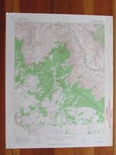 Havasupai Point Arizona 1964 Original Vintage USGS Topo Map