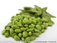 🔥 EDAMAME Soy bean 8 Samen * Soja Bohnen * gesunder Snack aus Japan Gemüse