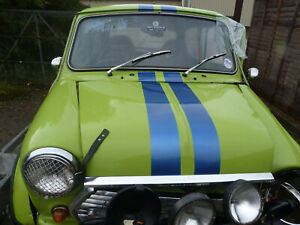 AUSTIN MINI, BONNET, NEEDS REPAIR AS IN PICTURES, GREEN/WHITE, 1984, KEY 123