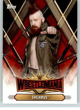 2019 WWE Road to Wrestlemania Roster #29 Sheamus