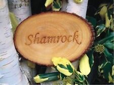 Wooden Garden Decorative Plaques & Signs