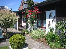 Ferienwohnung 23611 Bad Schwartau, Nähe Lübeck, Travemünde, Scharbeutz, Ostsee