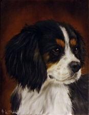 Original King Charles Spaniel Dog Portrait Oil Painting on Stretch Canvas