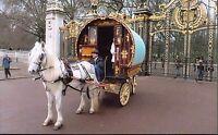 Romany Gypsy Cannon London Parade 2015 Reading Vardo Caravan,Bow Top Wagon p.c#2