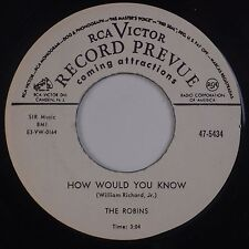 THE ROBINS: How Would  You Know RCA VICTOR DJ Promo RE Doo Wop 45 NM