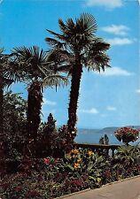 B35730 Insel Mainau im Bodensee Palmengruppe  germany