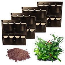 Pack 4 Kits Mur Végétal Extérieur Flowall Noir 42x40cm avec 32 plantes